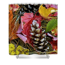 Forest Floor Portrait Shower Curtain by Rich Franco