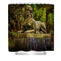 Forest Mysteries Shower Curtain by Chris Lord