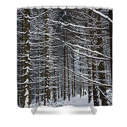 Forest Of Marburg In Winter Shower Curtain by Axiom Photographic
