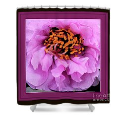 Framed In Purple - Abstract Floral Shower Curtain by Carol Groenen