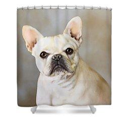 French Bulldog Luna Shower Curtain by Barbara Hymer