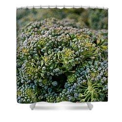 Fresh Broccoli Shower Curtain by Susan Herber