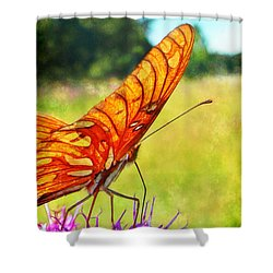 Fritillary On Ironweed Shower Curtain by Judi Bagwell