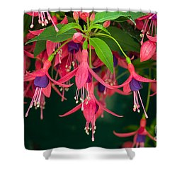 Fuchsia Windchime Flowers Shower Curtain by Alan and Linda Detrick and Photo Researchers