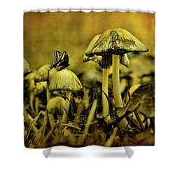 Fungus World Shower Curtain by Chris Lord