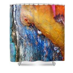Shower Curtain featuring the digital art Ganesh by Richard Laeton