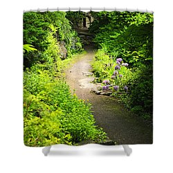 Garden Path Shower Curtain by Elena Elisseeva