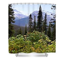 Glacier Scenery Shower Curtain by Susan Kinney