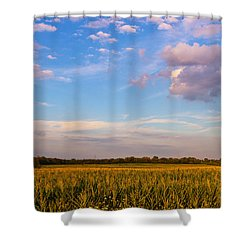 Glorious Life Shower Curtain by Rachel Cohen