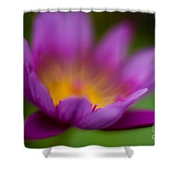 Glorious Lily Shower Curtain by Mike Reid
