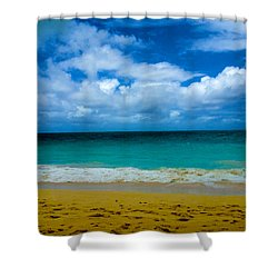 Gods Gift Shower Curtain by Cheryl Young