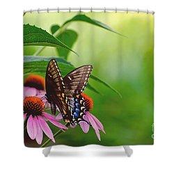 Goodbye Again Shower Curtain by Lois Bryan