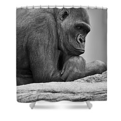 Gorilla Portrait Shower Curtain by Darren Greenwood