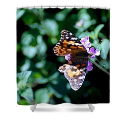 Got It Covered Shower Curtain by Eric Tressler