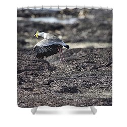 Gracious Ascent Shower Curtain by Douglas Barnard