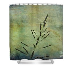Grass Stem Shower Curtain by Judi Bagwell