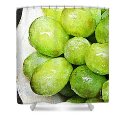 Green Grapes On A Plate Shower Curtain by Andee Design