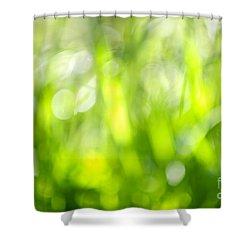 Green Grass In Sunshine Shower Curtain by Elena Elisseeva