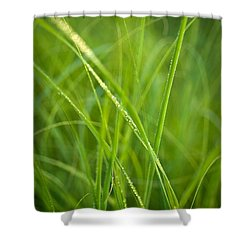 Green Prairie Grass Shower Curtain by Steve Gadomski