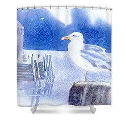Gull Watch Shower Curtain by Joseph Gallant
