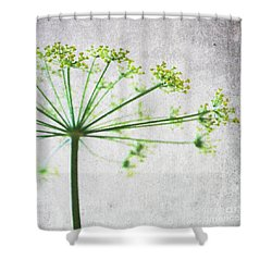 Harvest Starbust 3 Shower Curtain by Linda Woods