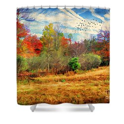 Heading South Shower Curtain by Darren Fisher