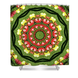 Heart Kaleidoscope Shower Curtain by Mariola Bitner