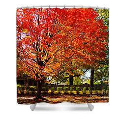 Hedge Row Shower Curtain by Chris Berry