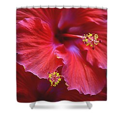 Hibiscus Duo Shower Curtain by Sandi OReilly