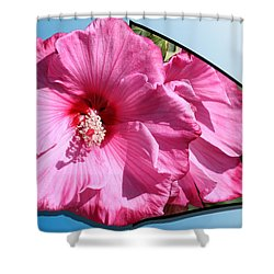Hibiscus Shower Curtain by Shane Bechler