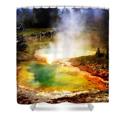 Hidden Gem Shower Curtain by Ellen Heaverlo
