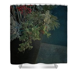 Hidden Keys Shower Curtain by Jerry Cordeiro