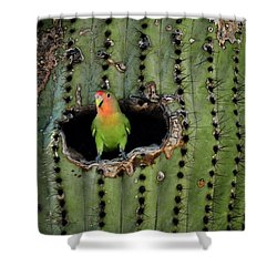Home Sweet Home  Shower Curtain by Saija  Lehtonen