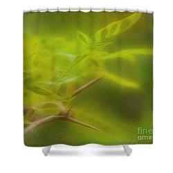 Honey Locust Shower Curtain by Judi Bagwell