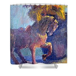 Horse Statue Shower Curtain by Terry  Chacon
