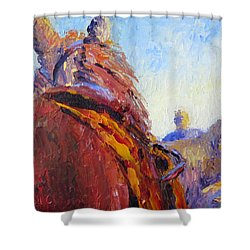 Horse Trainer Shower Curtain by Terry  Chacon