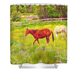 Horses Paradise Shower Curtain by Karol Livote