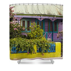 House Of Colors Shower Curtain by Rene Triay Photography
