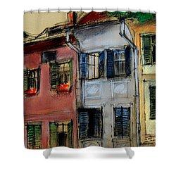 Houses In Transylvania 1 Shower Curtain by Mona Edulesco