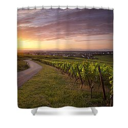 Hunawihr Alsace Shower Curtain by Brian Jannsen