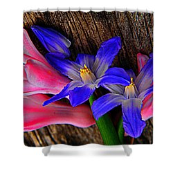 Hunt And Gather Shower Curtain by Chris Berry
