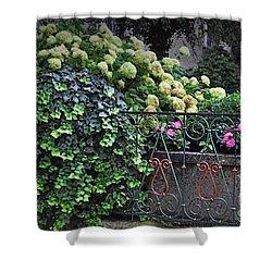 Hydrangeas Salzburg Shower Curtain by Mary Machare