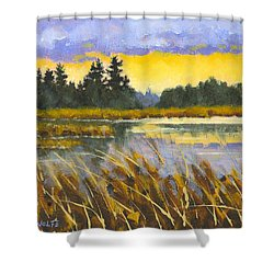 I Saw The Light Shower Curtain by Richard De Wolfe