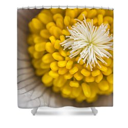 In Close Shower Curtain by Mike Hendren