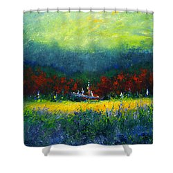 Independence Day Shower Curtain by Shannon Grissom