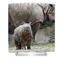 Indian Rhinoceros Rhinoceros Unicornis Shower Curtain by Konrad Wothe