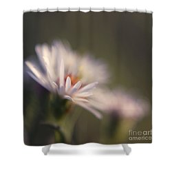 Innocence 02 Shower Curtain by Variance Collections
