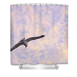 Into The Wind Shower Curtain by Priya Ghose