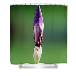 Iris 12 Shower Curtain by Nathan Larson