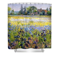 Irises And Two Fir Trees Shower Curtain by Timothy Easton
